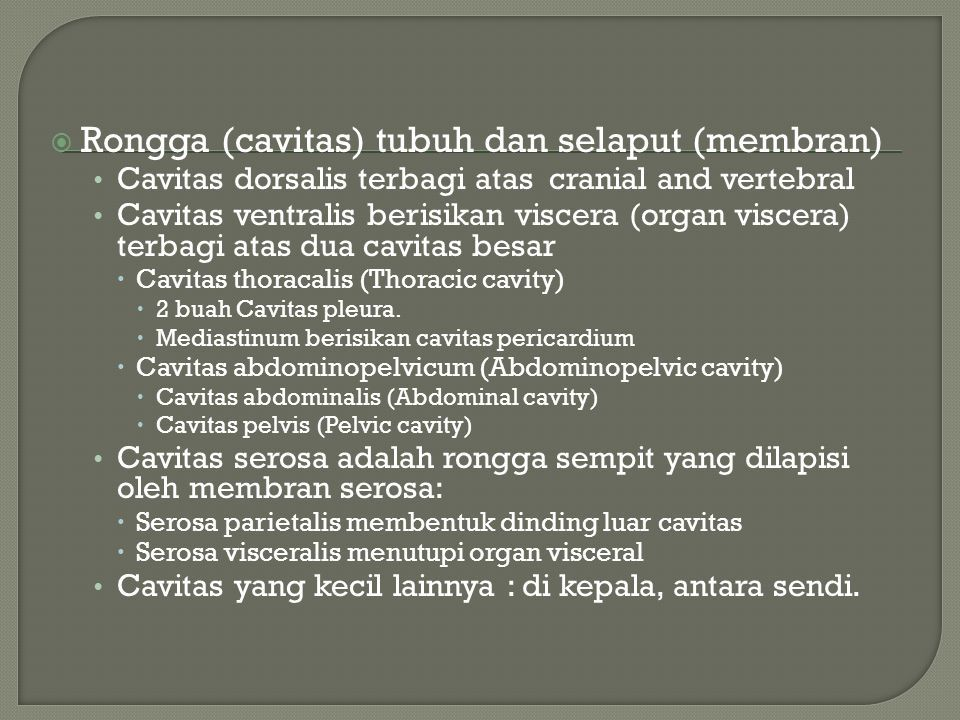 Pengantar Anatomi A Departemen Anatomi Fk Usu Ppt Download A synchondrosis (or primary cartilaginous joint) is a type of cartilaginous joint where hyaline cartilage completely joins together two bones.1 synchondroses are different than symphyses. departemen anatomi fk usu