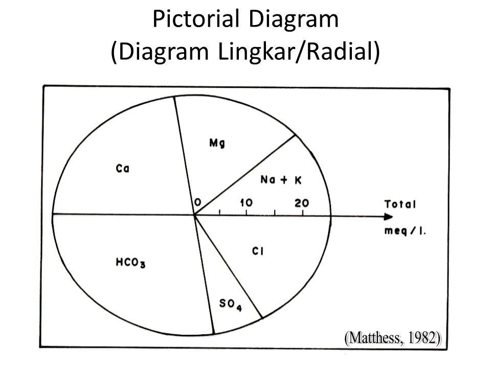 Pictorial Diagram (Diagram Lingkar/Radial)‏