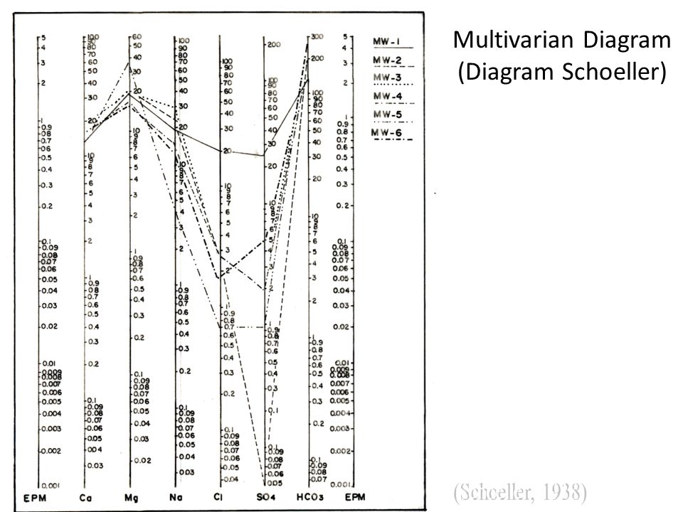 Multivarian Diagram (Diagram Schoeller)‏