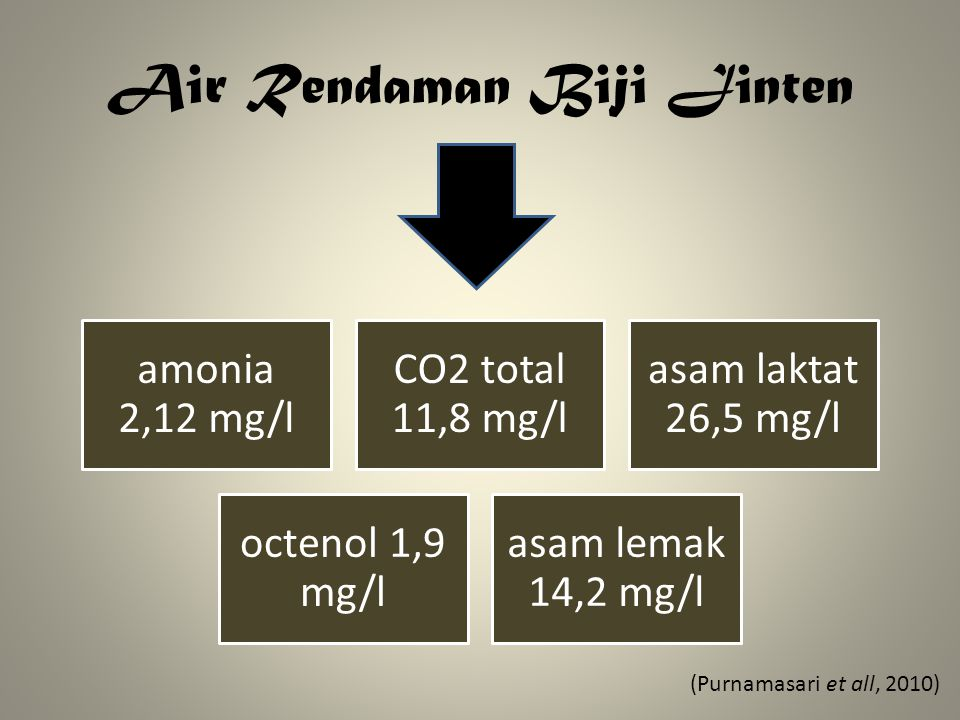 Air Rendaman Biji Jinten amonia 2,12 mg/l CO2 total 11,8 mg/l asam laktat 26,5 mg/l octenol 1,9 mg/l asam lemak 14,2 mg/l (Purnamasari et all, 2010)