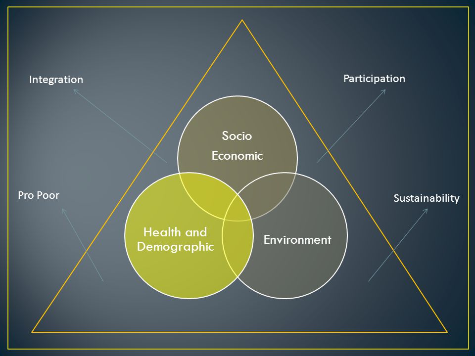 Socio Economic Environment Health and Demographic Integration Pro Poor Participation Sustainability