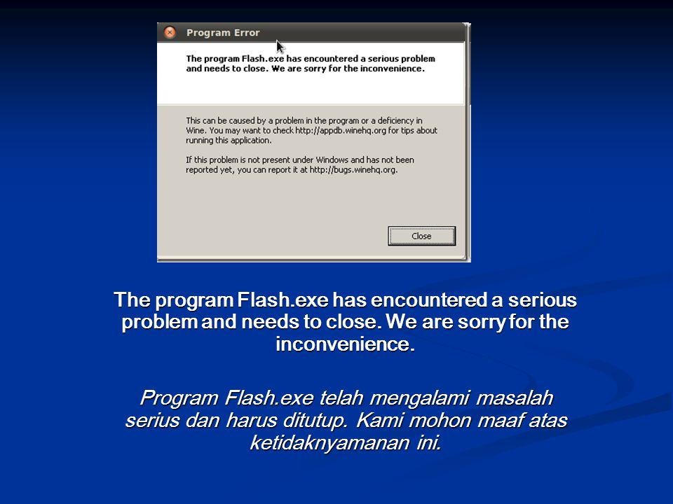 The program Flash.exe has encountered a serious problem and needs to close.