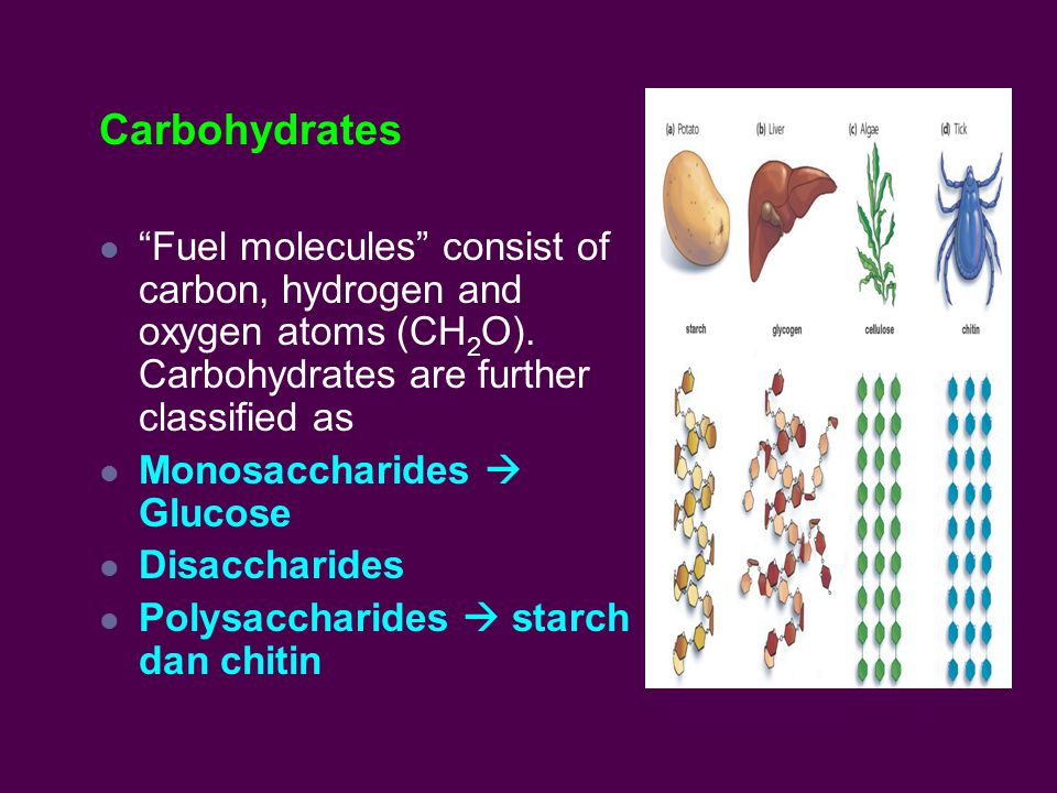 Carbohydrates Fuel molecules consist of carbon, hydrogen and oxygen atoms (CH 2 O).