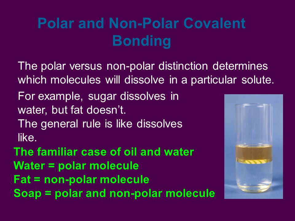 The polar versus non-polar distinction determines which molecules will dissolve in a particular solute.