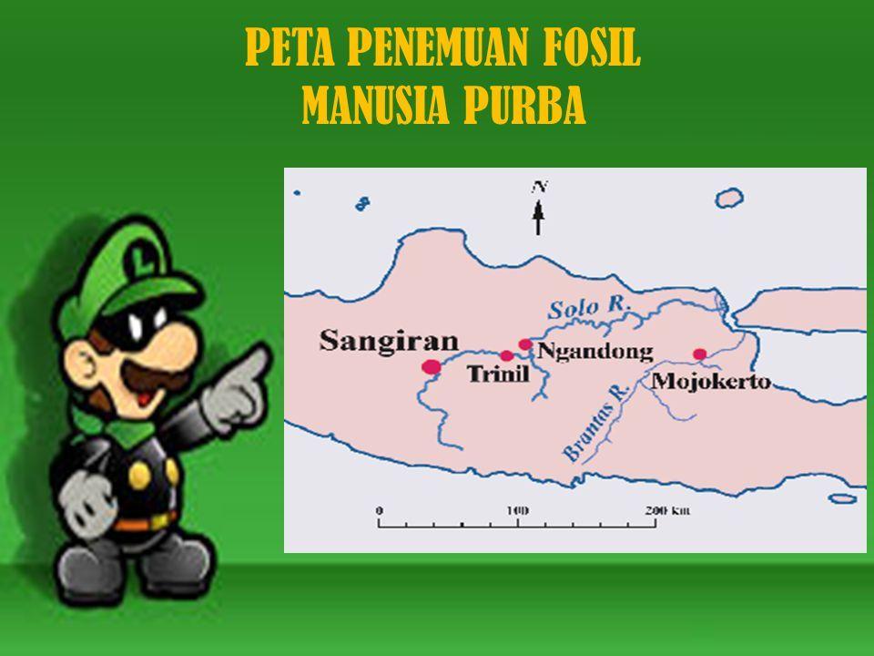 Welcome To The Fossil Kingdom Hari Ini Kita Akan Belajar Tentang Jenis Jenis Manusia Purba Di Indonesia Hari Ini Kita Akan Belajar Tentang Jenis Jenis Ppt Download