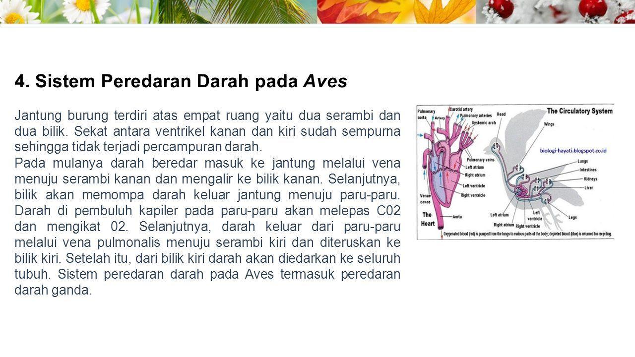 Jantung Adalah Sebuah Rongga Rongga Organ Berotot Yang Memompa Darah Lewat Pembuluh Darah Oleh Kontraksi Berirama Yang Berulang Darah Menyuplai Okisgen Ppt Download
